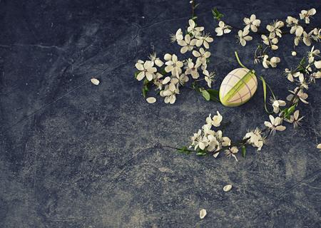 blossom apple tree in vase on dark background