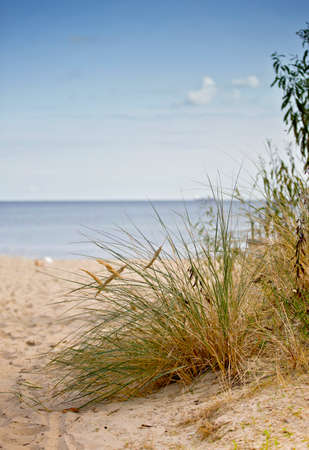 Baltic sea coast, Baltic sea and sandy beach on a summer day