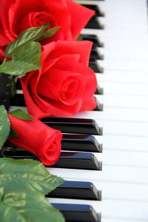 Red roses sitting on piano keys Stok Fotoğraf