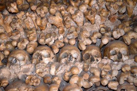 Skulls and bones 版權商用圖片