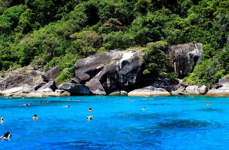 Similan Islands, Thailand - March 31, 2017: a group of tourists on vacantion are engaged in snorkeling in bright blue water near the stone shore of a tropical island covered green plants Editorial