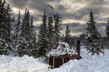 A cozy house for barbecue and outdoor recreation in winter coniferous forest. The barbecue place is covered with deep snowdrifts. Concept background of friendly weekend and family holidays on nature
