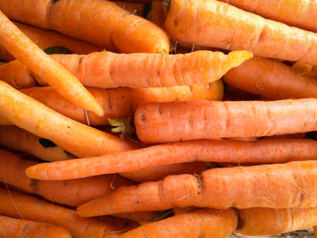 Close up detail fresh and sweet bunch pile of carrot natural background.