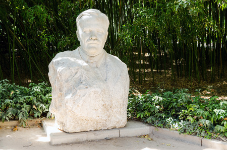 molotov: Bust of V. Molotov (Scriabin), whose name is from 1935 to 1957 bore the Nikitsky botanical garden. Crimea, Yalta, Nikita village.