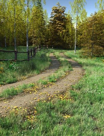 grass verge: Corsia di paese in autunno (autunno) in esecuzione digitalmente attraverso boschi, 3d rendering illustrazione