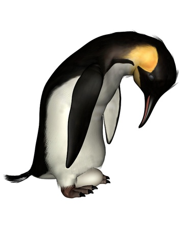 Emperor Penguin holding an egg on its feet, 3d digitally rendered illustration Stock Illustration - 9867512