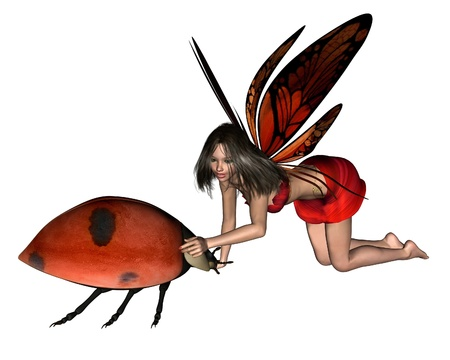 Red ladybird fairy with butterfly wings and spotted ladybird, 3d digitally rendered illustration Stock Illustration - 11963207