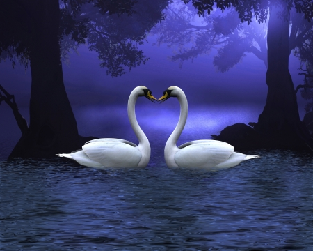 Two swans on a wooded lake at evening, making a heart shape between the necks, 3d digitally rendered illustration Stock Photo