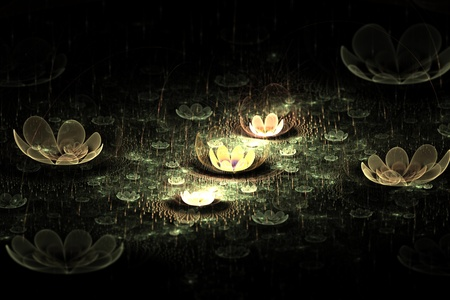 Waterlily or lotus flowers on a pond at night abstract fractal design for backgrounds and wallpapers photo