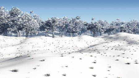 coppice: Coppiced woodland in winter snow, 3d digitally rendered illustration