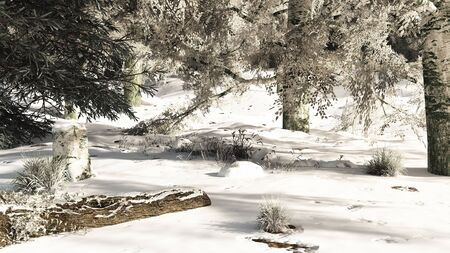 glade: Snowy woodland glade in winter, 3d digitally rendered illustration