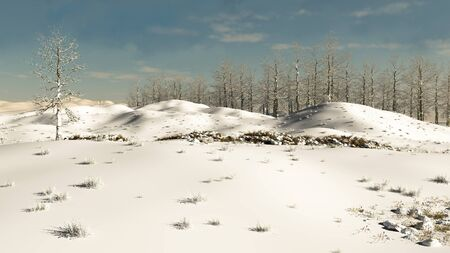 coppice: Wooded hillside in winter snow, 3d digitally rendered illustration