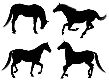 galloping: Illustrated black silhouettes of a horse in various poses on a white background Stock Photo