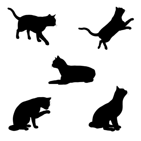 licking in isolated: Black silhouette illustrations of a cat in various poses on a white background