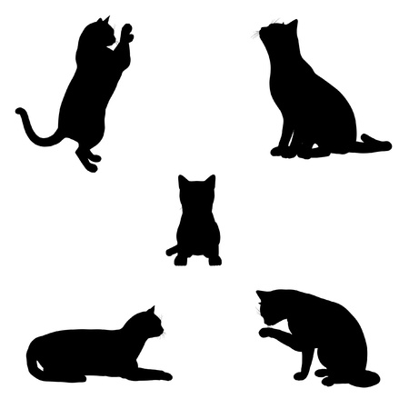 whiskers: Black silhouette illustrations of a cat in various poses on a white background
