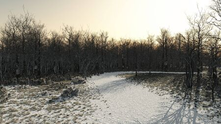 deserted: Snow covered path through winter woodland, 3d digitally rendered illustration