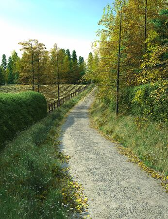 hedgerow: Country lane running alongside fields and woodland, 3d digitally rendered illustration Stock Photo