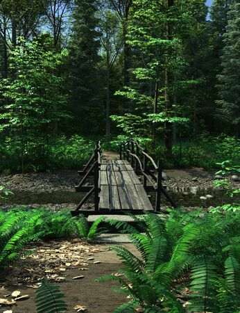 footbridge: Wooden bridge over a small woodland stream in bright summer sunshine, 3d digitally rendered illustration Stock Photo