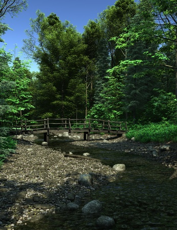 secluded: Wooden bridge over a small stream on a woodland path in bright summer sunshine, 3d digitally rendered illustration Stock Photo