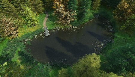 Aerial view of a small woodland lake with wooden jetty, 3d digitally rendered illustration illustration