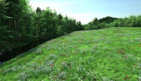 lady s: Coutryside prado lleno de flores silvestres, amapolas rojas, margaritas, ran�nculos y lady s smock junto a un peque�o arroyo, 3d rindi� la ilustraci�n digital Foto de archivo