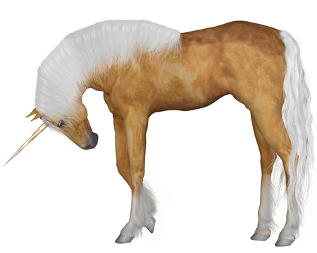 Magical palomino unicorn with golden horn and silver mane and tail with head down against a white background, 3d digitally rendered illustration illustration