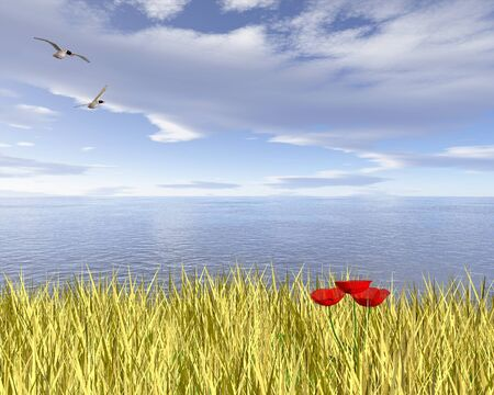 Golden corn or wheat field with red poppies overlooking the sea, 3d digitally rendered illustration Фото со стока