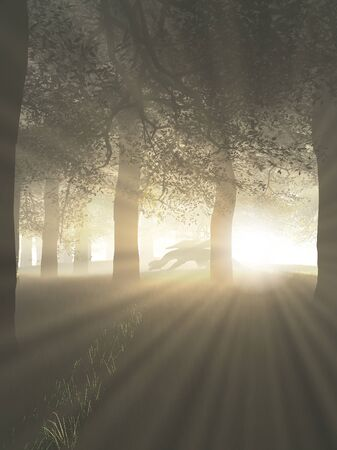 misty forest: Fantasy illustration of a dragon prowling through a misty forest with shafts of bright sunlight, 3d digitally rendered illustration