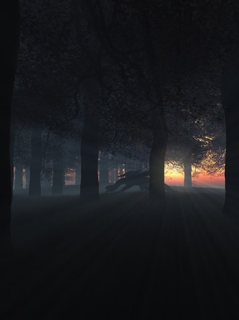 prowling: Fantasy illustration of a dragon prowling through a dark misty forest at sunset with shafts of bright light, 3d digitally rendered illustration Stock Photo