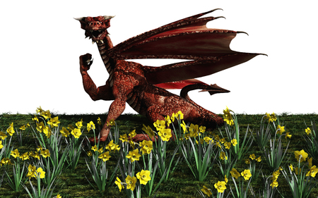 welsh: Illustration of a red Welsh dragon with daffodils for St Davids Day, March 1st, 3d digitally rendered illustration
