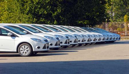 fila: coches blancos están alineados en el estacionamiento en una sola línea