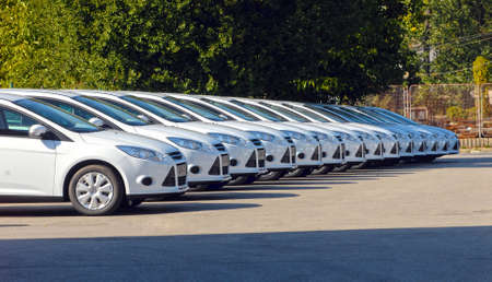 white cars are lined up in the parking lot in one line Stock Photo