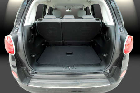 trunk: Empty car trunk