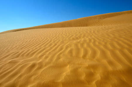 Rippled sand dunes under blue sky, southern Negev Desert, Israel. photo