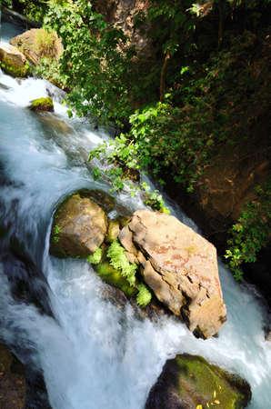 banias: Banias Waterfall . Hermon Stream Nature Reserve, Israel.