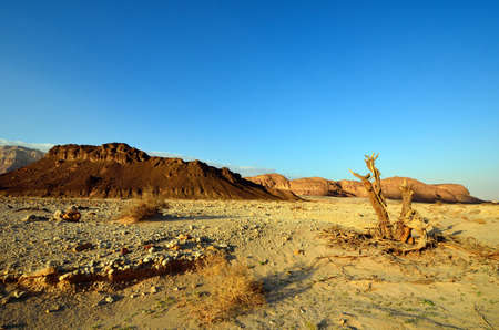 timna: The Timna Valley - historical area is rich in copper ore,  the southwestern Arabah, Israel.