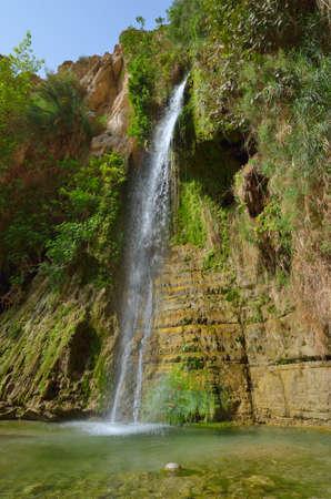 gedi: Davids Waterfall. En Gedi Nature Reserve, Israel