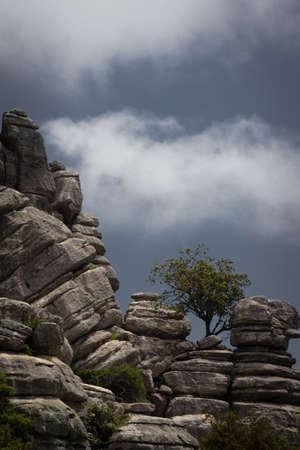 Gesteinsfomation mit Baum und Wolke El Torcal Standard-Bild - 117491673