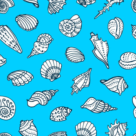 seacoast: Seamless pattern with doodle seashells. Hand drawn vector illustration.