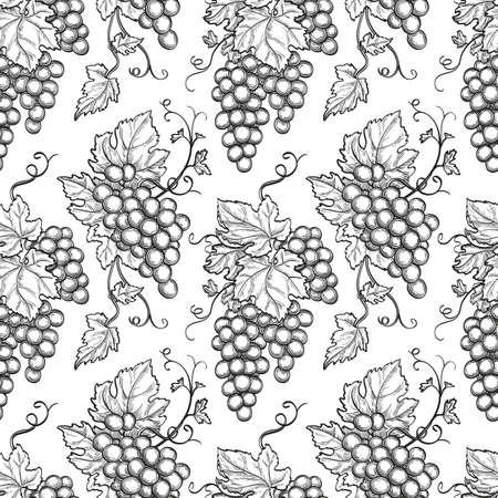 Naadloos patroon met druiven. Hand getrokken vector illustratie.