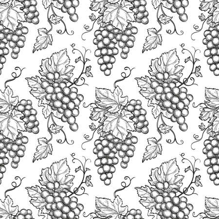 Seamless pattern with grapes. Hand drawn vector illustration.