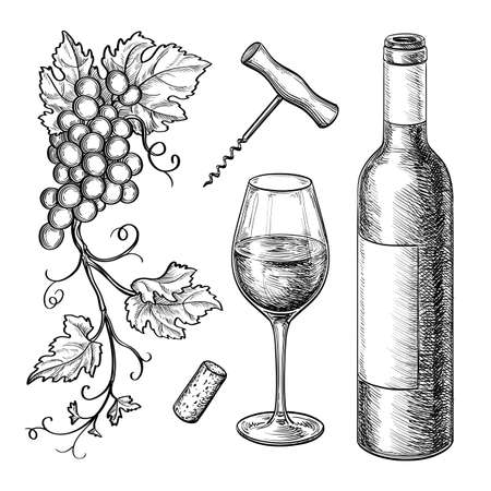 Grape branches, bottle, glass of wine, corkscrew, cork. Isolated on white background. Hand drawn vector illustration. Retro style.