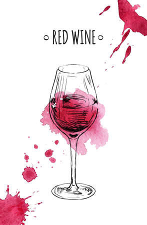 Glass of red wine. Hand drawn vector sketch. Watercolor stains.