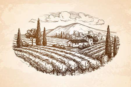 Hand drawn vineyard landscape on old paper background. Vintage style vector illustration.