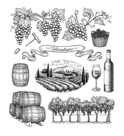 ブドウ栽培の大きなセット。