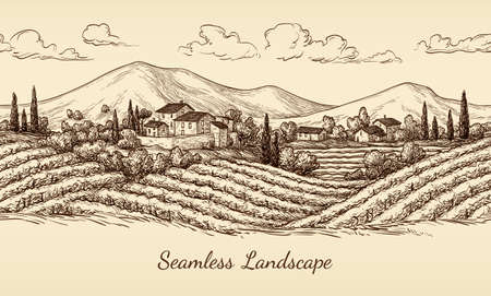 Vineyard seamless landscape. Illustration