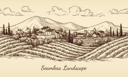 Wijngaard naadloos landschap.