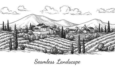 Vineyard seamless landscape. Illustration