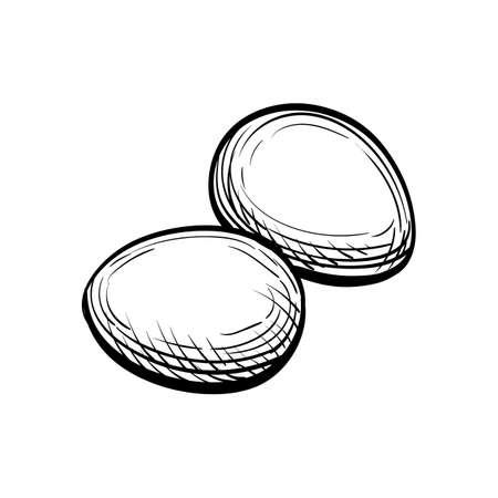 手には、卵のベクトル イラストが描かれました。