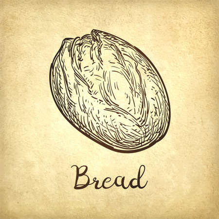 Vector illustration of rustic bread